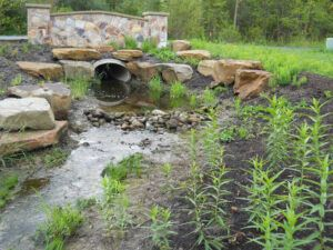 Stream Renovation Project