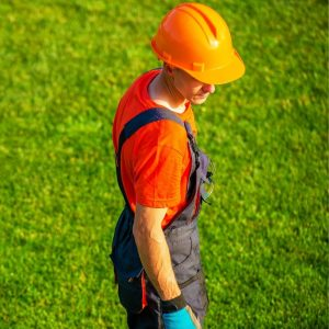 What Does a Landscape Contractor Do
